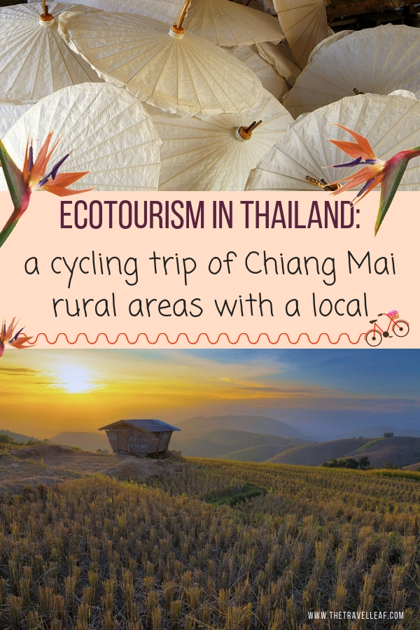 Ecotourism in Thailand: a cycling trip of Chiang Mai rural areas with a local. This is one of the best things to do in Chiang Mai. It's not only beautiful but also sustainable and eco-friendly. What better way to discover Thailand? #chiangmai #thailand #ecotourism #sustainable #travel