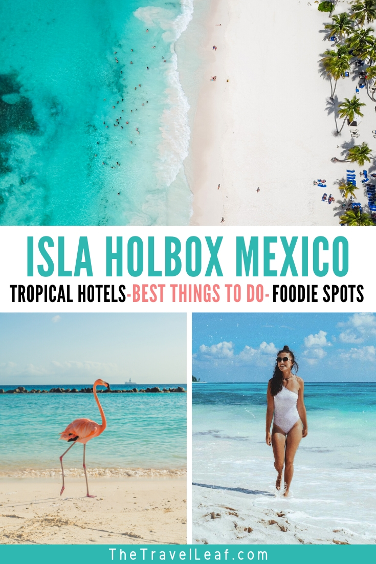Isla Holbox Mexico - Tropical paradise with clear blue water and flamingos in their natural habitat